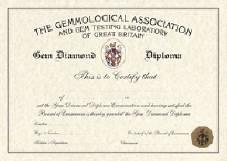 DGA Diploma Certificate